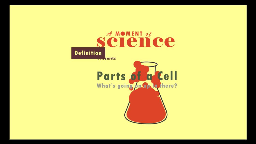 sciencenowintro