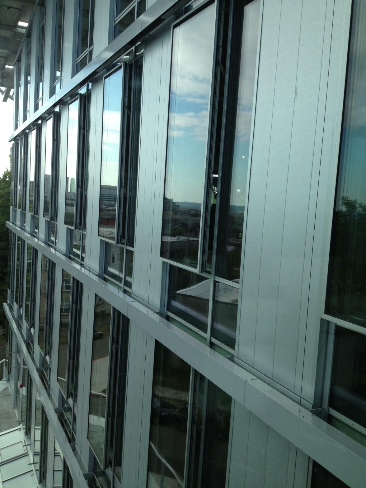 Intentional Future's windows