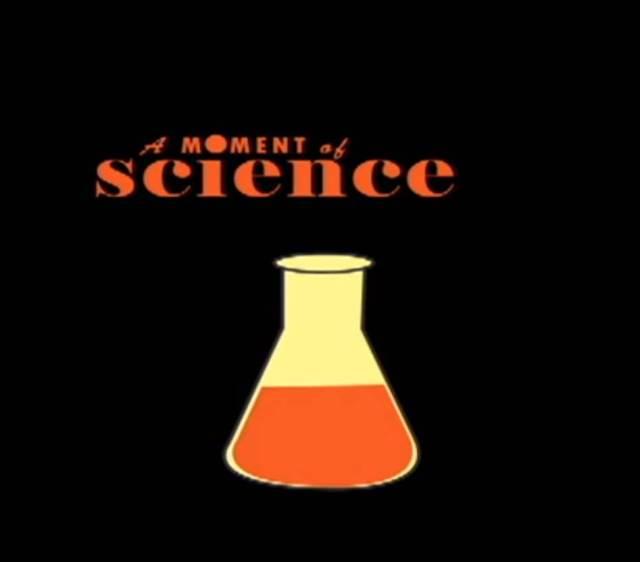 amomentofsciencelogo