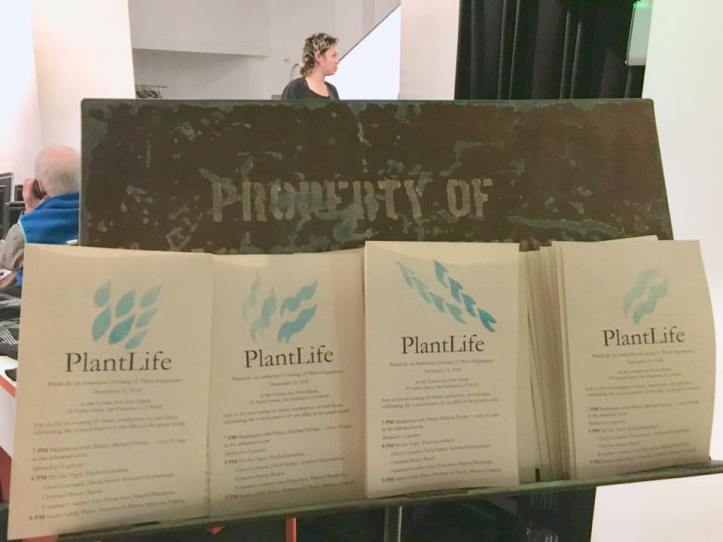 kat-at-plantlife